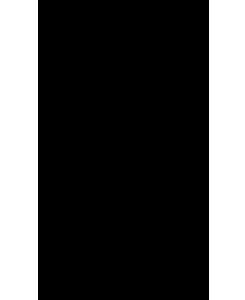 Logo La Gatta Ubriaca Ristorante Bordolano Cremona
